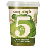 5-A-Day Green Soup