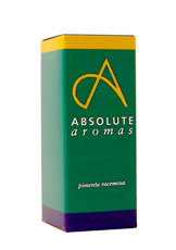 Absolute Aromas Ginger Oil 10ml