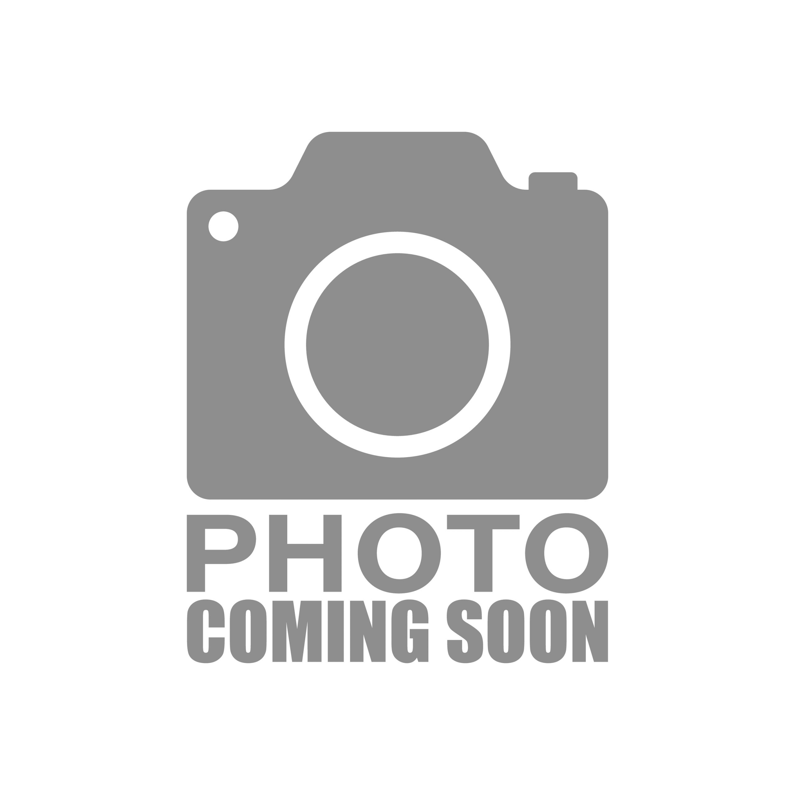 Filippi Panettone Glassato (Icing & Grilled Almonds) 500G