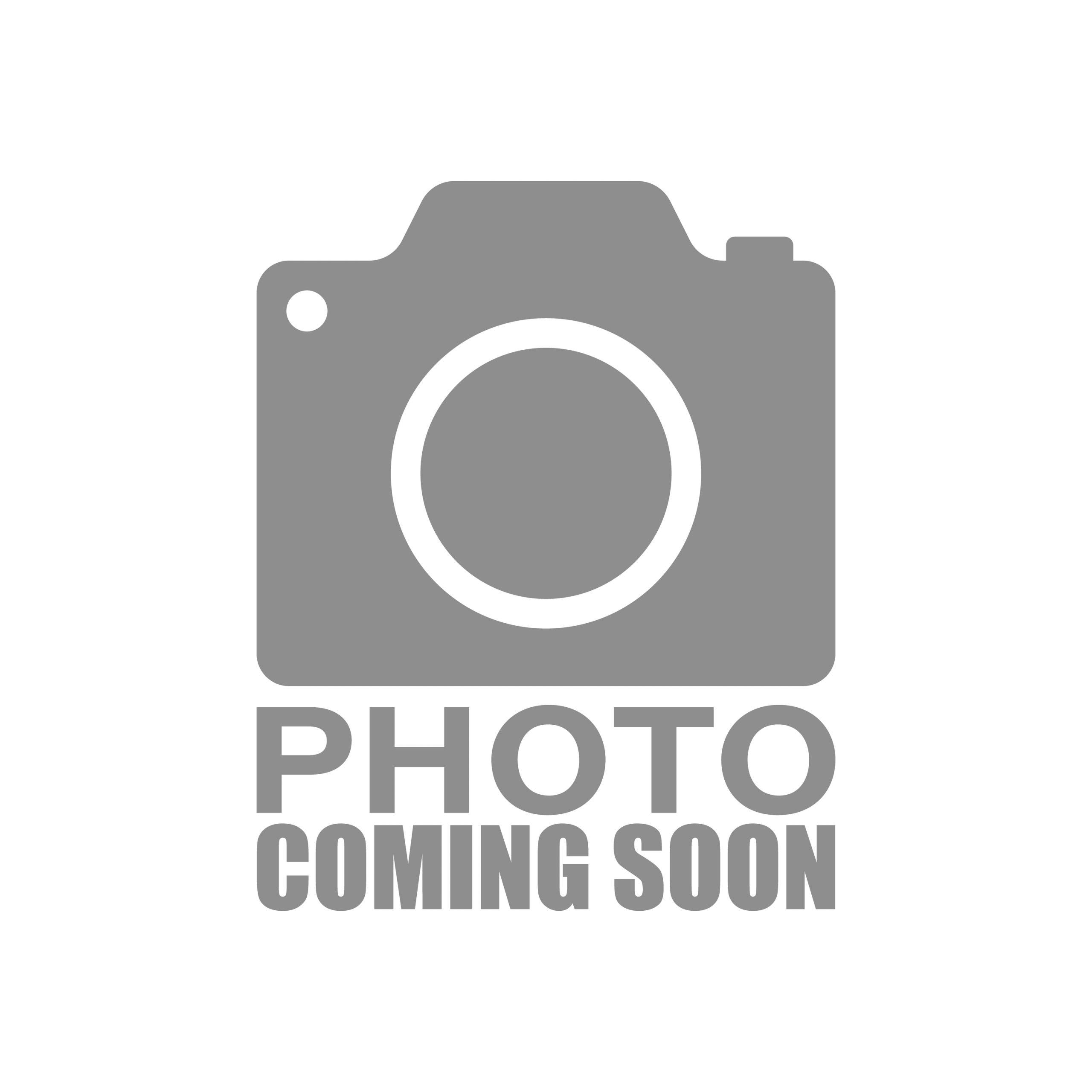 Filippi Panettone Salted Caramel 500G